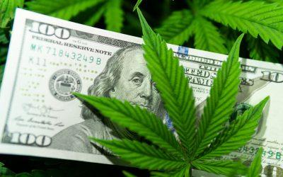 Medical Marijuana Saves Money
